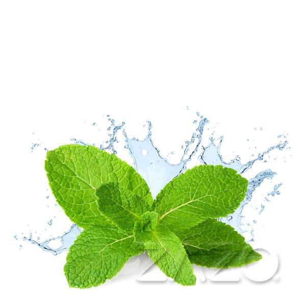 Zazo E-Liquid Fresh Mint 10ml