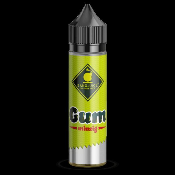 Bang Juice Aroma GUM Minzig 25ml